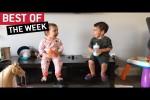 Video - die besten Videos der 3. April-Woche