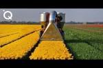 Video - Unglaubliche moderne Maschinen für die Landwirtschaft 4