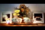 Video - Die Tassen - Produkt des Jahres