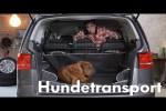 Video - Den Hund im Auto mit in den Urlaub nehmen? Das geht ganz einfach!
