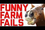 Video - Lustige Hoppalas mit Pferd und Reiter