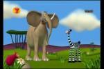 Video - Der Elefant und seine Freunde (3)