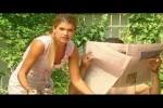 Video - Bienen und Blumen - Ladykracher