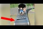 Video - Die 10 Lustigsten Baufehler