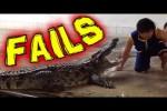 Video - die besten Hoppalas der ersten Dezember-Hälfte