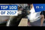 Video - Top 100 Viral Videos des Jahres 2017 - Teil 4