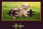 Spiel - Daily Jigsaw
