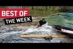 Video - die besten Videos der 2. April-Woche 2019