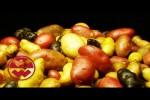 Video - Kleine Doku über die Kartoffel