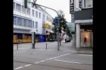 Video - Enten gehen über die Straße