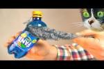 Video - 5 Lifehacks von SLIVKISHOW