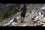 Video - eine blinde Katze geht wandern