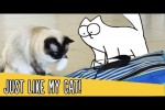 Video - Just Like My Cat - Simon's Cat