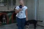 Video - Lustiges Interview