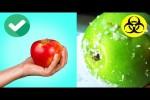 Video - So prüfst du Lebensmittel auf Qualität