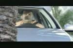 Video - Einparken - lustiger Werbespot von VW