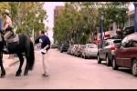Video - Berittene Polizei