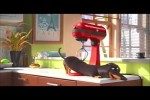 Video - Hund und Küchenmaschine