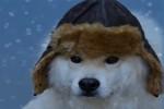 Video - It's Wintertime 03 - Es ist Winterzeit 03