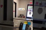 Video - Hund freut sich über Adoption