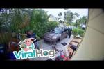 Video - Nachbarn holen Polizei wegen Papagei