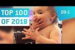 Video - Top 100 Viral Videos des Jahres 2018 - Teil 5