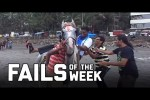 Video - Horsing Around: Fails of the Week (August 2020)