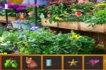 Spiel - Hidden Flowers