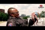 Video - Versteckte Kamera - Oktopus wird aus dem Mund geschleudert