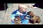 Video - Baby kuschelt mit Boxer-Welpen