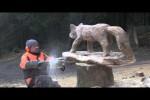 Video - Holzschnitzerei mit der Kettensäge