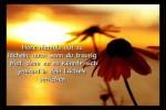Video - 10 Gedanken über das Leben
