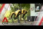 Video - Meet the robot dog promoting safe distancing in Singapore's parks