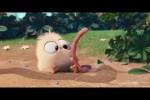 Video - Der frühe Vogel fängt den Wurm
