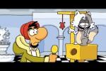 Video - Ruthe.de - Nachrichten - Katzenvideos