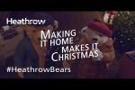 Video - Die Heathrow Bears kommen nach Hause