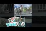 Video - Mal kurz den Müll wegbringen