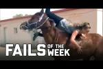 Video - die besten Hoppalas der 4. Juli-Woche 2020