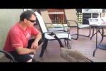 Video - Wenn zwei dieselbe Sprache sprechen