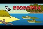 Video - Ruthe.de - Krokodile