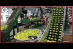 Video - Wie verschiedene Bälle für Ballsportarten hergestellt werden