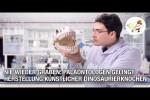 Video - Nie wieder graben: Paläontologen gelingt Herstellung künstlicher Dinosaurierknochen