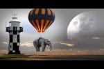 Video - Die besten Videos 2021 (Teil 72)