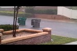 Video - Mülleimer-Rennen