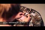 Video - XXUwe - Adventskalender 19