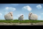 Video - Das Schäfchen