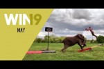 Video - WIN Compilation Mai 2019