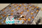 Video - Mit der Bohrmaschine den Kaffee süßen