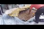 Video - Irrer Schwindel mit Matratzen in Russland