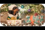 Video - How Dog Grinch Stole Christmas